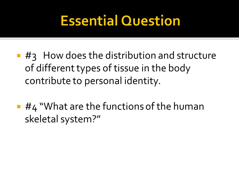 """ #3 How does the distribution and structure of different types of tissue in the body contribute to personal identity.  #4 """"What are the functions of"""