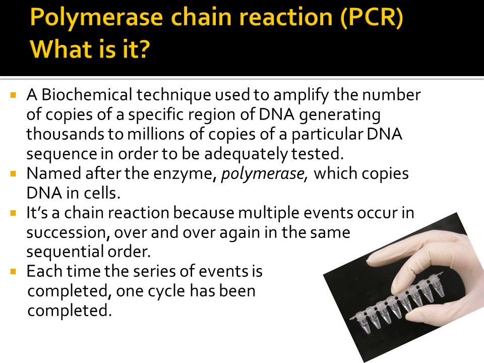  A Biochemical technique used to amplify the number of copies of a specific region of DNA generating thousands to millions of copies of a particular
