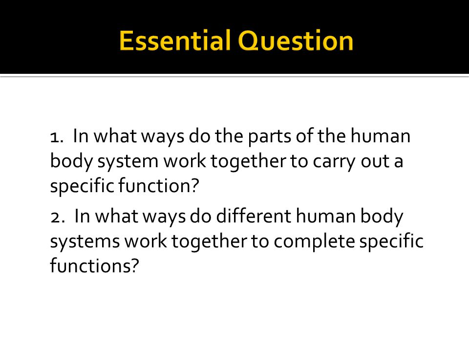 1. In what ways do the parts of the human body system work together to carry out a specific function? 2. In what ways do different human body systems
