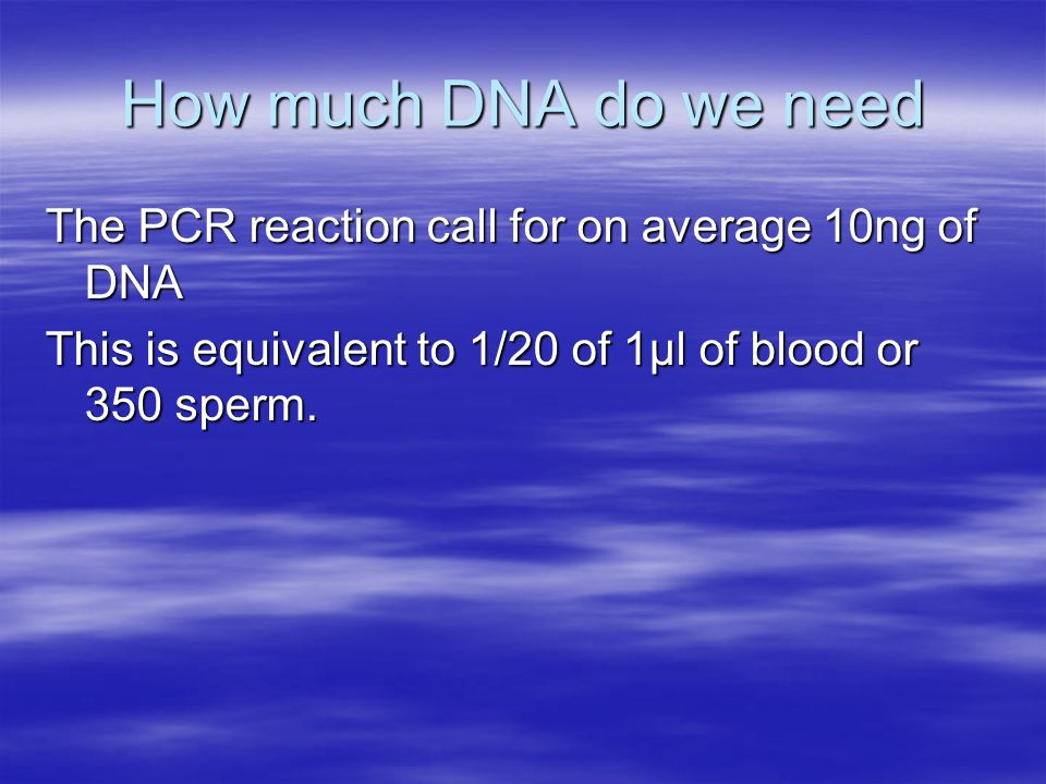 How much DNA do we need The PCR reaction call for on average 10ng of DNA This is equivalent to 1/20 of 1µl of blood or 350 sperm.