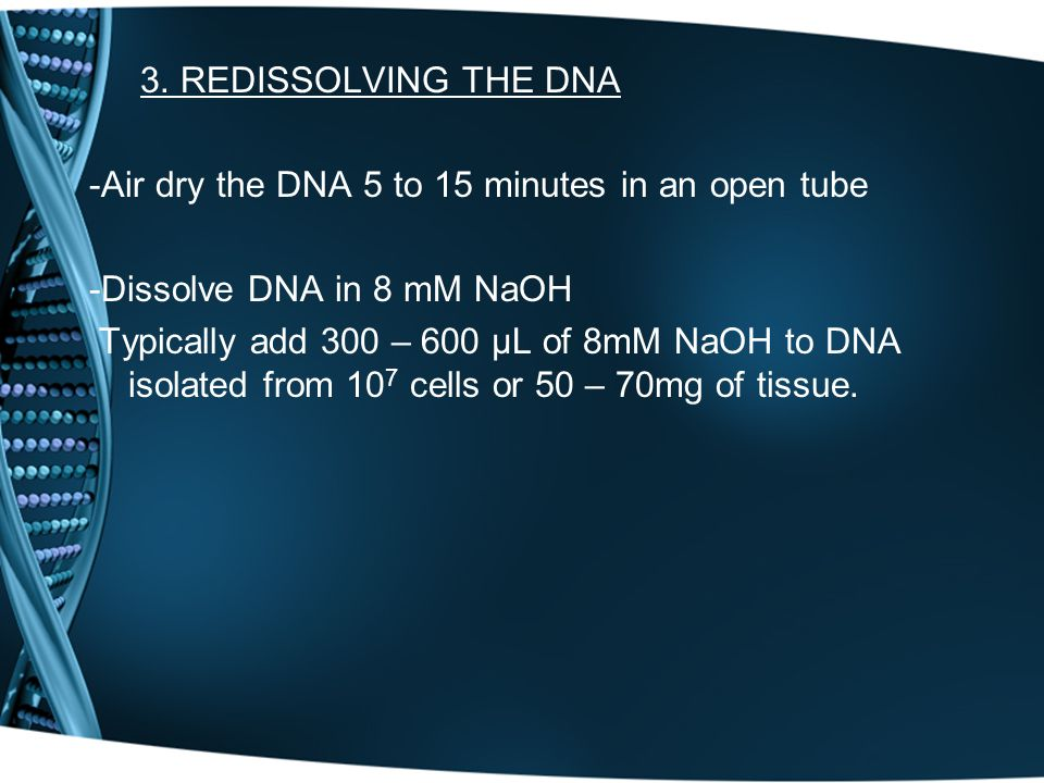 3. REDISSOLVING THE DNA -Air dry the DNA 5 to 15 minutes in an open tube -Dissolve DNA in 8 mM NaOH Typically add 300 – 600 μL of 8mM NaOH to DNA isol