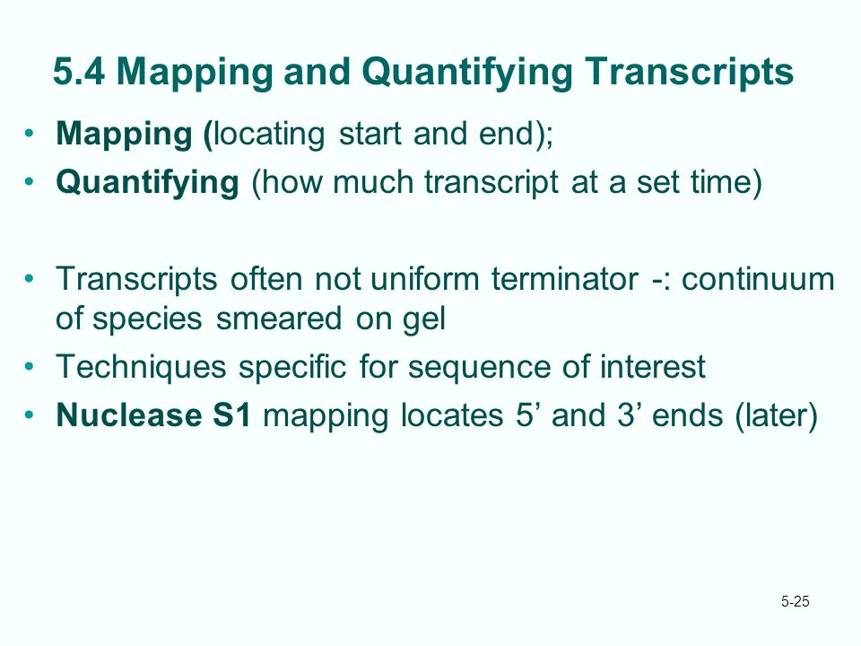 5-25 5.4 Mapping and Quantifying Transcripts Mapping (locating start and end); Quantifying (how much transcript at a set time) Transcripts often not uniform terminator -: continuum of species smeared on gel Techniques specific for sequence of interest Nuclease S1 mapping locates 5' and 3' ends (later)