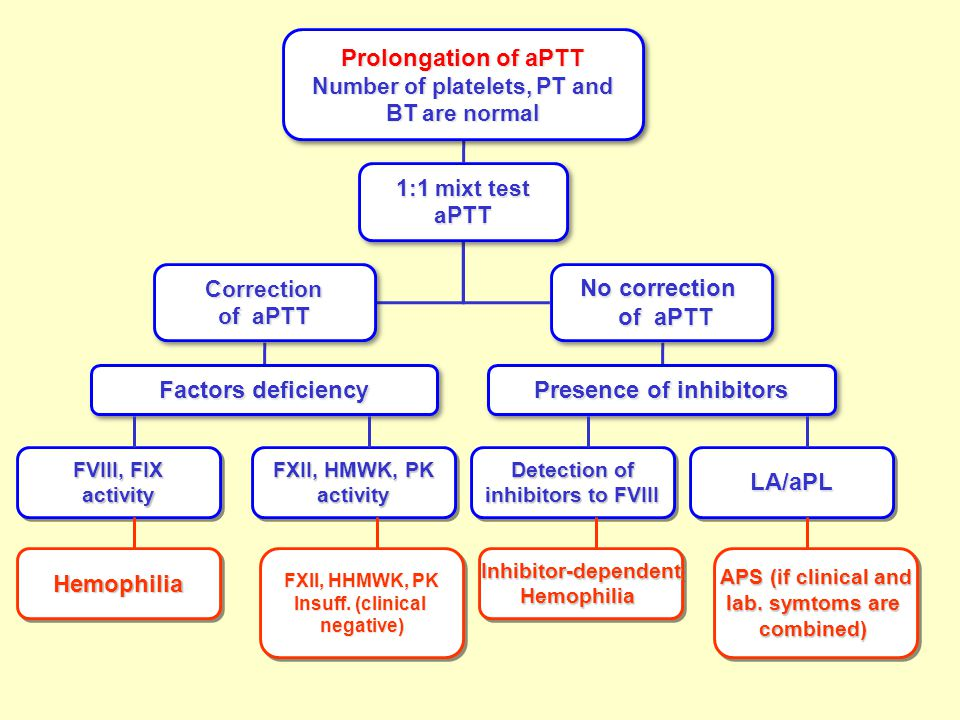 Prolongation of aPTT Number of platelets, PT and BT are normal Prolongation of aPTT Number of platelets, PT and BT are normal 1:1 mixt test aPTT aPTT Correction of aPTT Correction No correction of aPTT of aPTT No correction of aPTT of aPTT Factors deficiency Presence of inhibitors FVIII, FIX activity activity FXII, HMWK, PK activity activity HemophiliaHemophilia FXII, HHMWK, PK Insuff.
