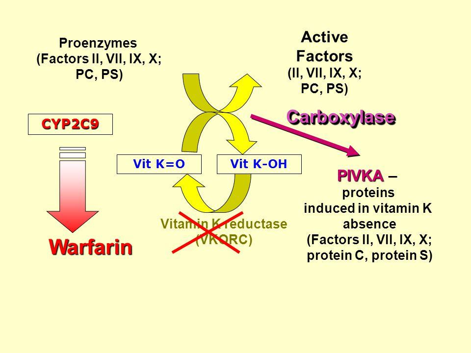 Vitamin K reductase (VKORC) Vit K-OHVit K=O CarboxylaseCarboxylase Warfarin PIVKA PIVKA – proteins induced in vitamin K absence (Factors II, VII, IX, X; protein С, protein S) Proenzymes (Factors II, VII, IX, X; PС, PS) Active Factors (II, VII, IX, X; PС, PS) CYP2C9