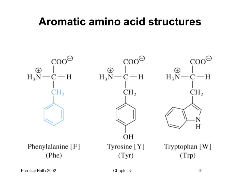 Prentice Hall c2002Chapter 319 Aromatic amino acid structures