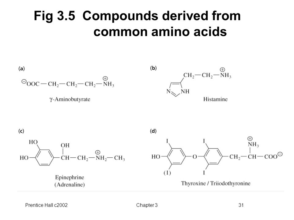 Prentice Hall c2002Chapter 331 Fig 3.5 Compounds derived from common amino acids