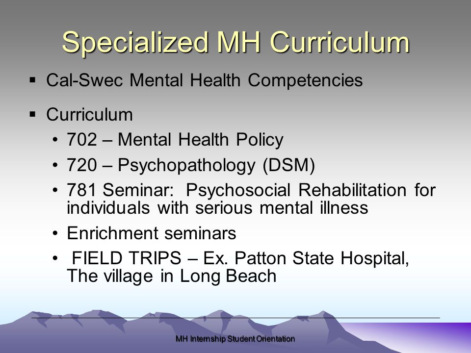 MH Internship Student Orientation Specialized MH Curriculum  Cal-Swec Mental Health Competencies  Curriculum 702 – Mental Health Policy 720 – Psychopathology (DSM) 781 Seminar: Psychosocial Rehabilitation for individuals with serious mental illness Enrichment seminars FIELD TRIPS – Ex.