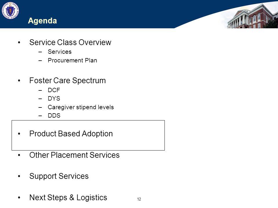 12 Agenda Service Class Overview –Services –Procurement Plan Foster Care Spectrum –DCF –DYS –Caregiver stipend levels –DDS Product Based Adoption Othe