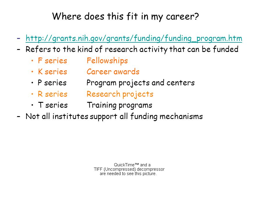 –http://grants.nih.gov/grants/funding/funding_program.htmhttp://grants.nih.gov/grants/funding/funding_program.htm –Refers to the kind of research activity that can be funded F seriesFellowships K seriesCareer awards P seriesProgram projects and centers R seriesResearch projects T seriesTraining programs –Not all institutes support all funding mechanisms Where does this fit in my career