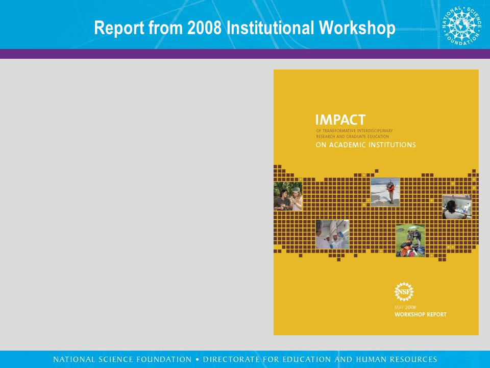 Report from 2008 Institutional Workshop