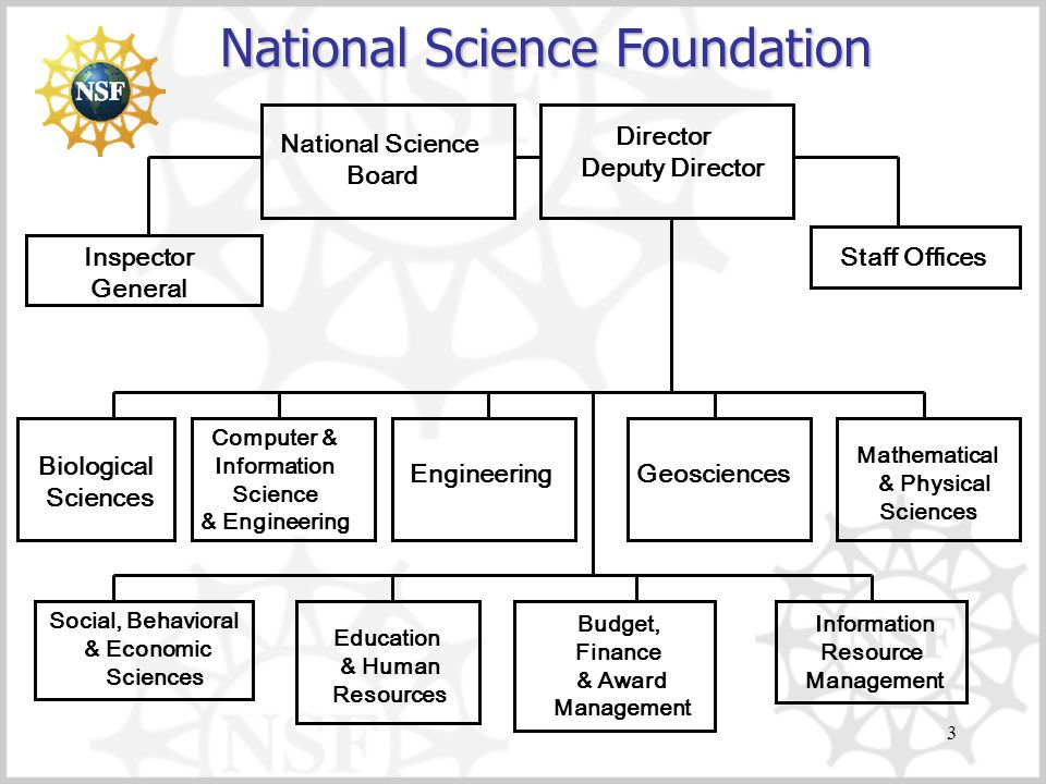 3 National Science Foundation Inspector General National Science Board Director Deputy Director Staff Offices Computer & Information Science & Engineering Engineering Geosciences Mathematical & Physical Sciences Social, Behavioral & Economic Sciences Education & Human Resources Budget, Finance & Award Management Information Resource Management Biological Sciences