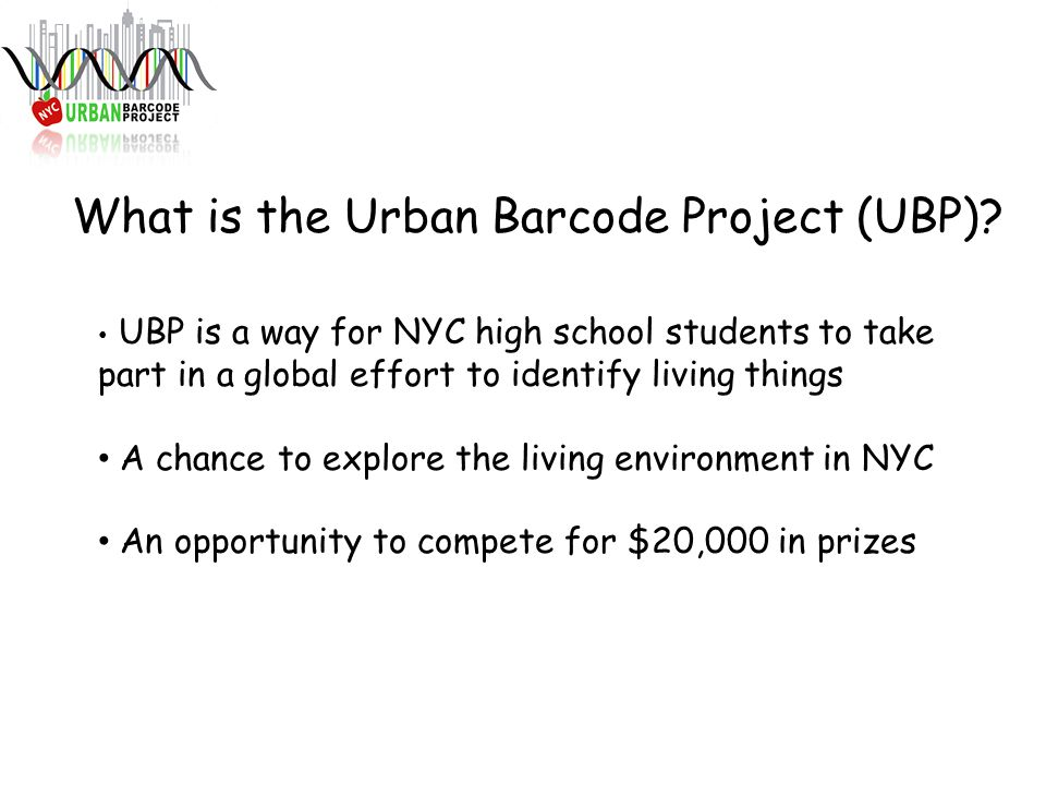 What is the Urban Barcode Project (UBP)? UBP is a way for NYC high school students to take part in a global effort to identify living things A chance