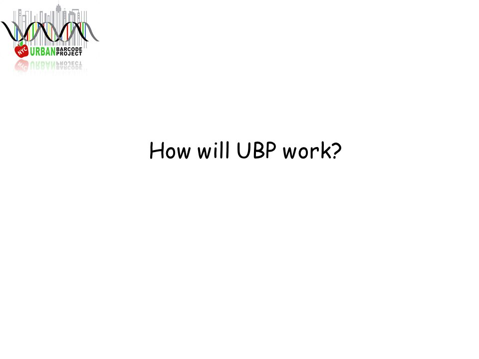 How will UBP work?