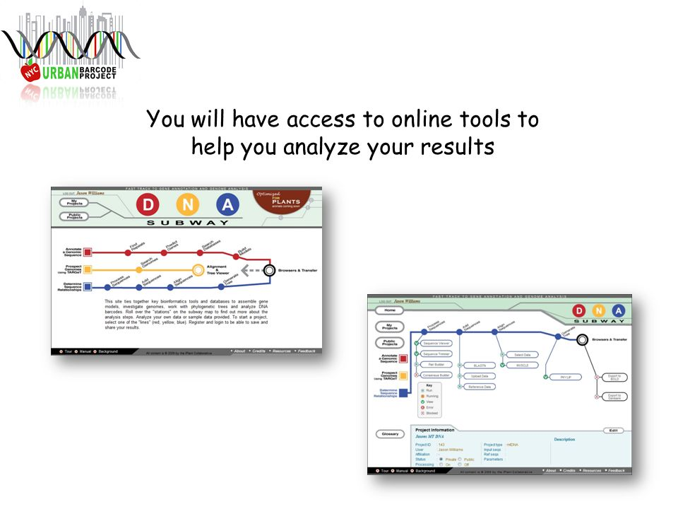 You will have access to online tools to help you analyze your results