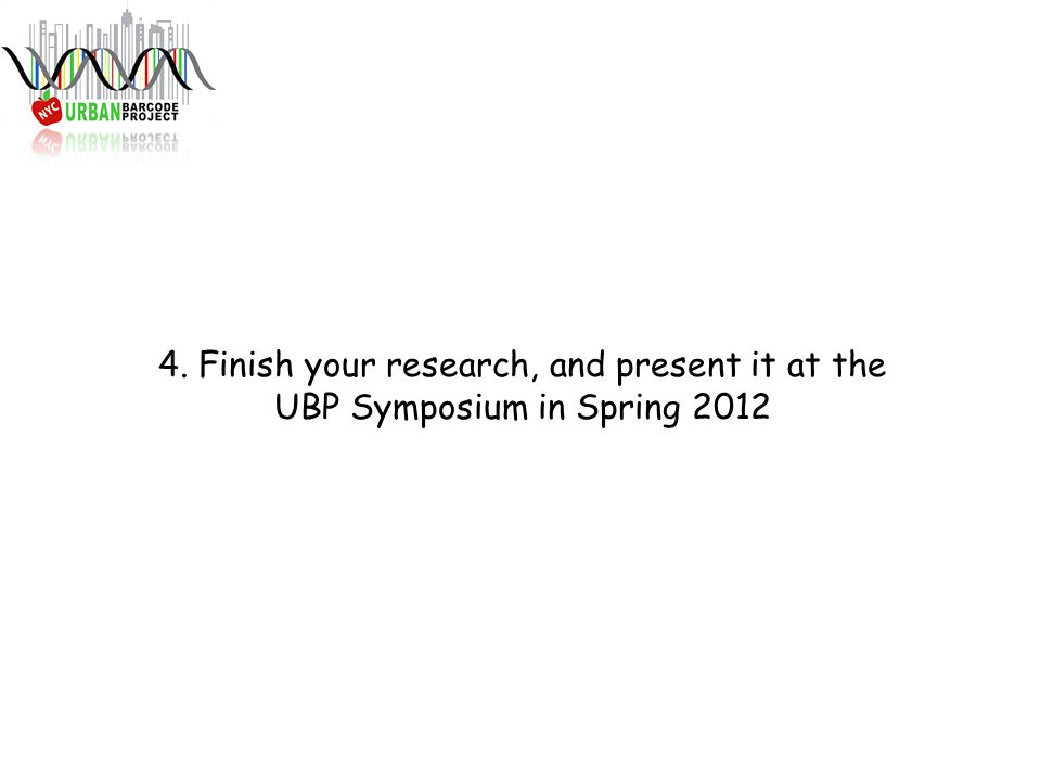 4. Finish your research, and present it at the UBP Symposium in Spring 2012