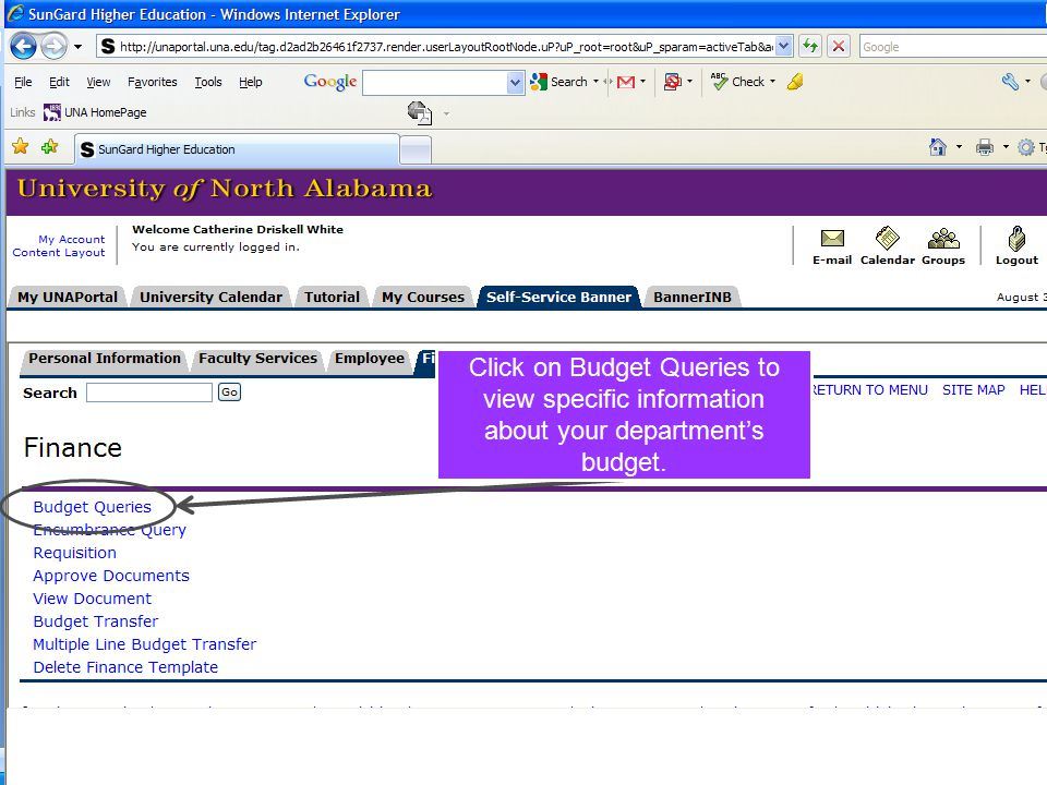 Click on Budget Queries to view specific information about your department's budget.