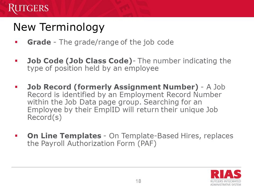 18 New Terminology  Grade - The grade/range of the job code  Job Code (Job Class Code)- The number indicating the type of position held by an employee  Job Record (formerly Assignment Number) - A Job Record is identified by an Employment Record Number within the Job Data page group.