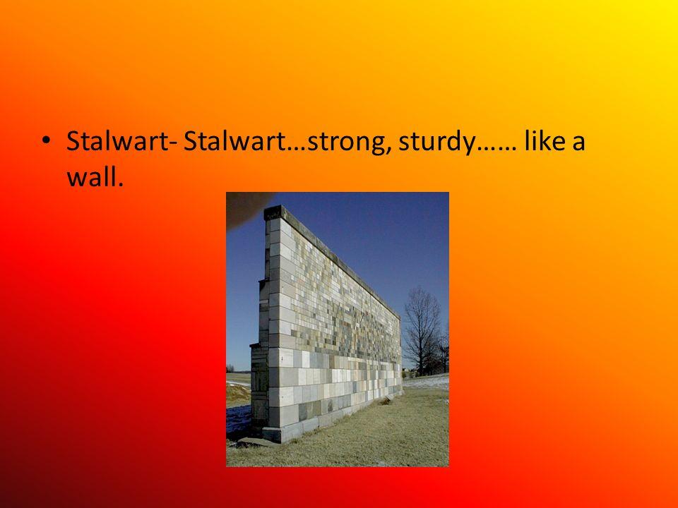 Stalwart- Stalwart…strong, sturdy…… like a wall.