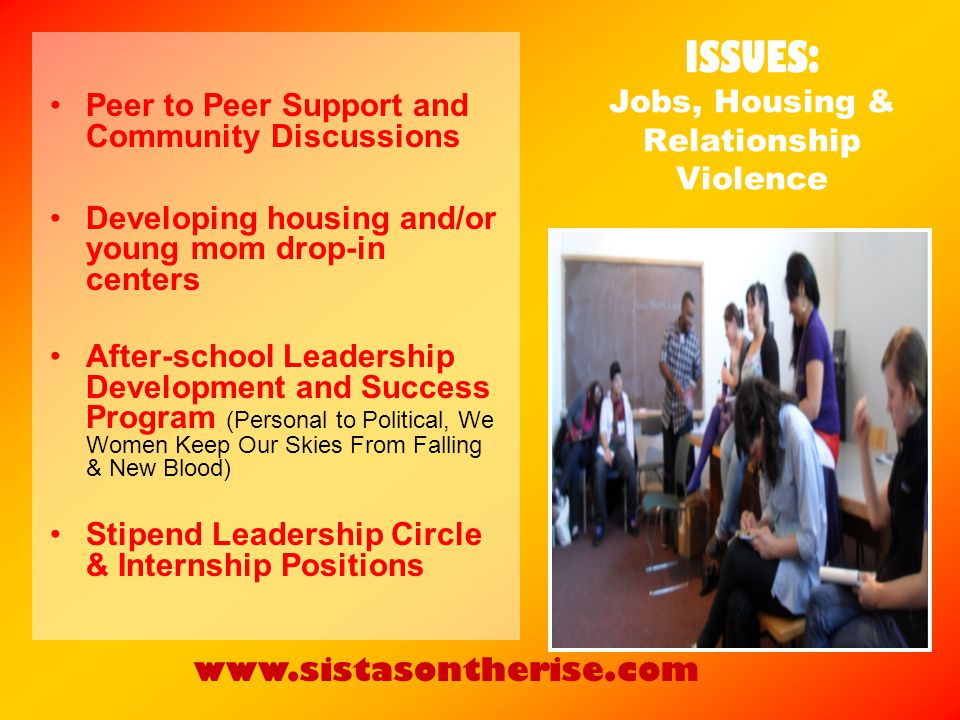ISSUES: Jobs, Housing & Relationship Violence Peer to Peer Support and Community Discussions Developing housing and/or young mom drop-in centers After-school Leadership Development and Success Program (Personal to Political, We Women Keep Our Skies From Falling & New Blood) Stipend Leadership Circle & Internship Positions www.sistasontherise.com