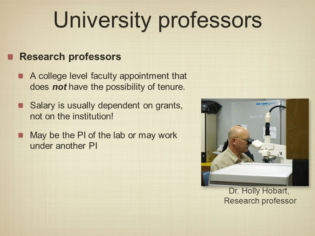 University professors Research professors A college level faculty appointment that does not have the possibility of tenure.