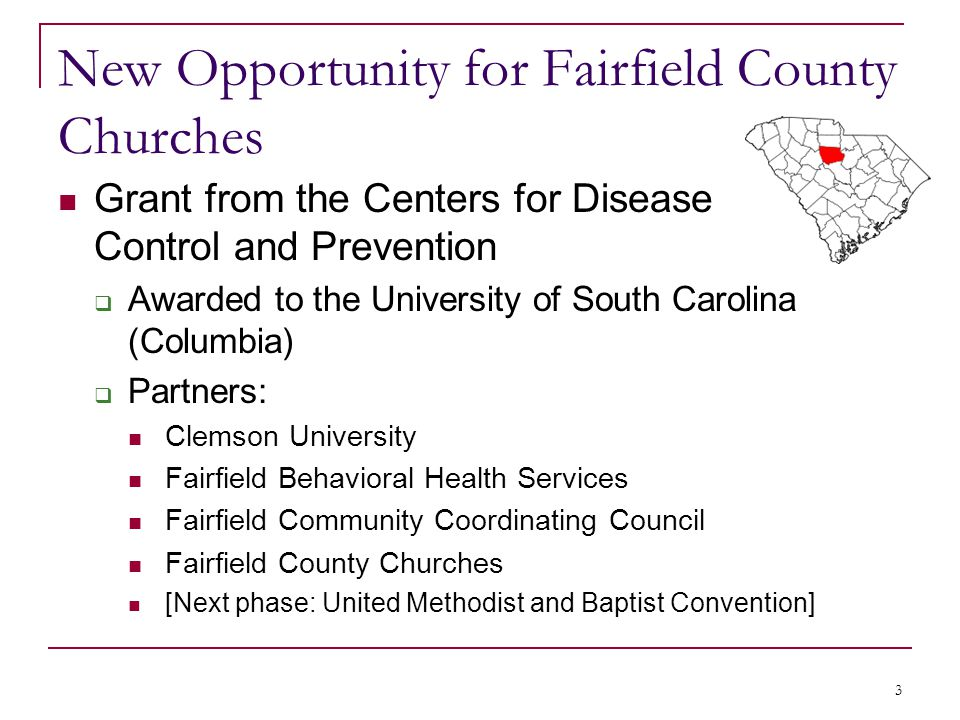 New Opportunity for Fairfield County Churches Grant from the Centers for Disease Control and Prevention  Awarded to the University of South Carolina (Columbia)  Partners: Clemson University Fairfield Behavioral Health Services Fairfield Community Coordinating Council Fairfield County Churches [Next phase: United Methodist and Baptist Convention] 3