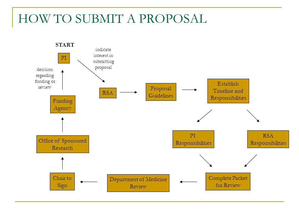 PI RSA Proposal Guidelines Establish Timeline and Responsibilities PI Responsibilities RSA Responsibilities Complete Packet for Review Department of M