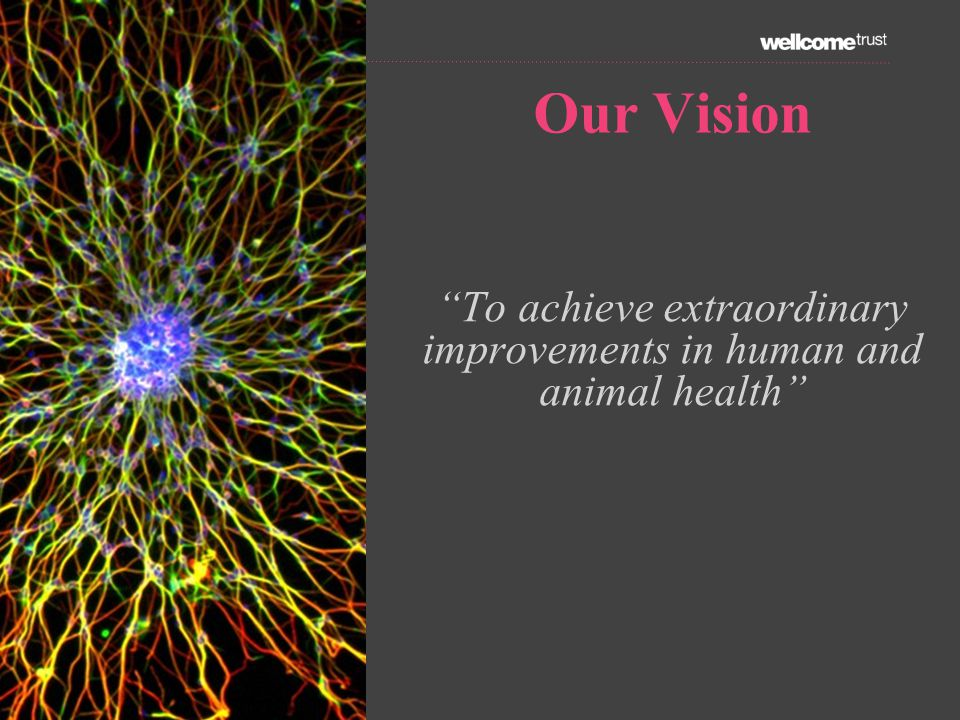 Our Vision To achieve extraordinary improvements in human and animal health