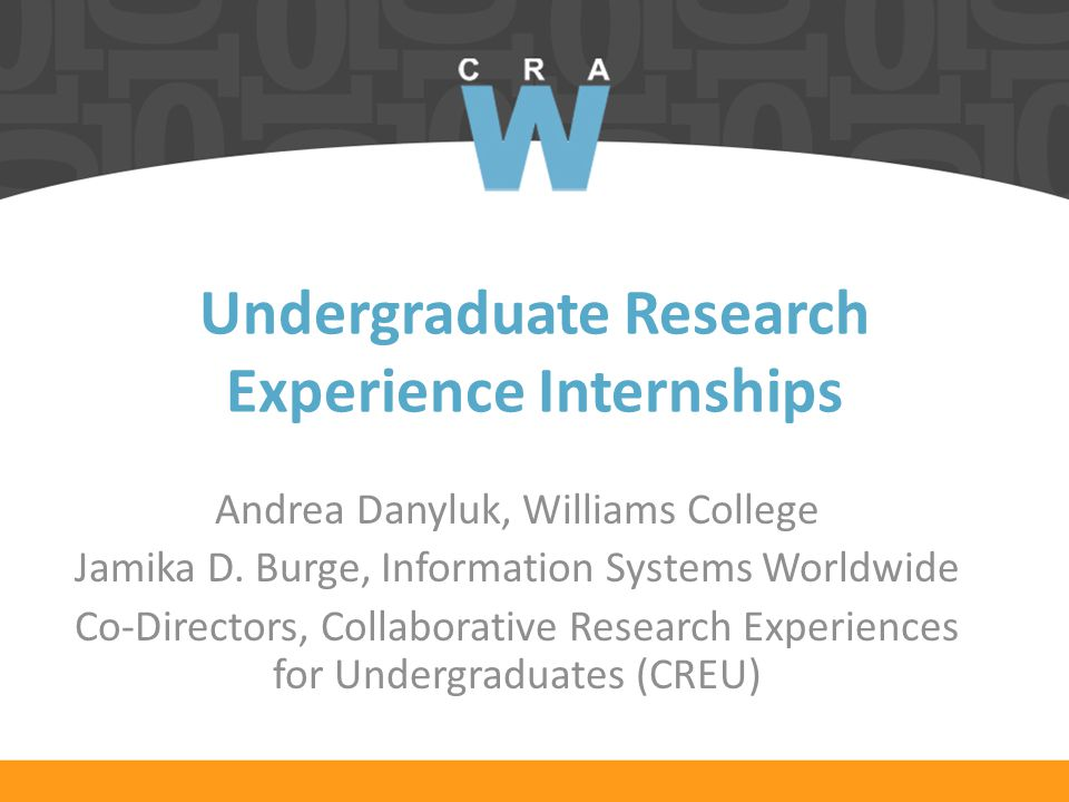 Undergraduate Research Experience Internships Andrea Danyluk, Williams College Jamika D.