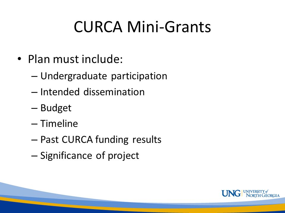 CURCA Mini-Grants Plan must include: – Undergraduate participation – Intended dissemination – Budget – Timeline – Past CURCA funding results – Significance of project