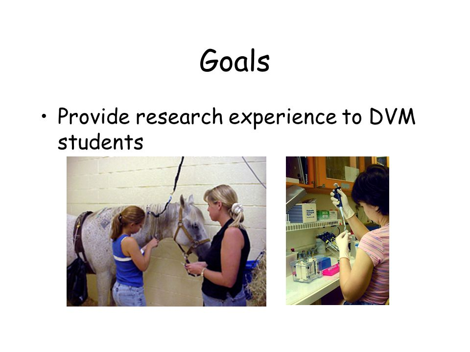 Goals Provide research experience to DVM students