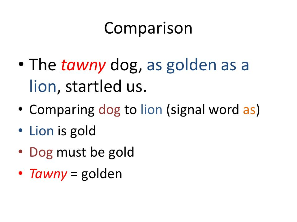 Comparison The tawny dog, as golden as a lion, startled us.
