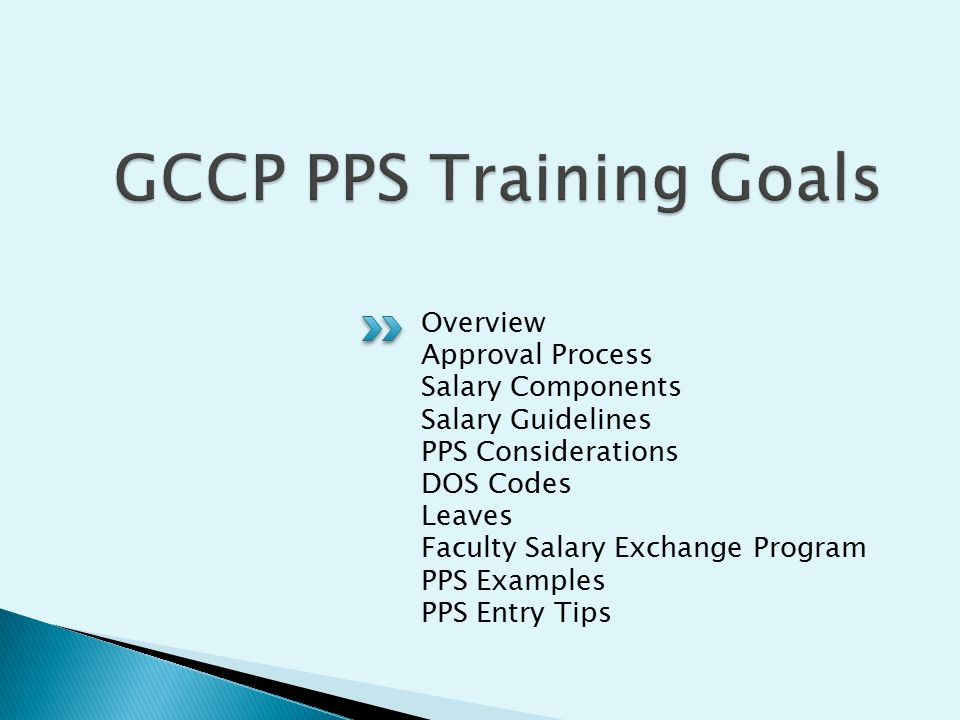 Overview Approval Process Salary Components Salary Guidelines PPS Considerations DOS Codes Leaves Faculty Salary Exchange Program PPS Examples PPS Entry Tips