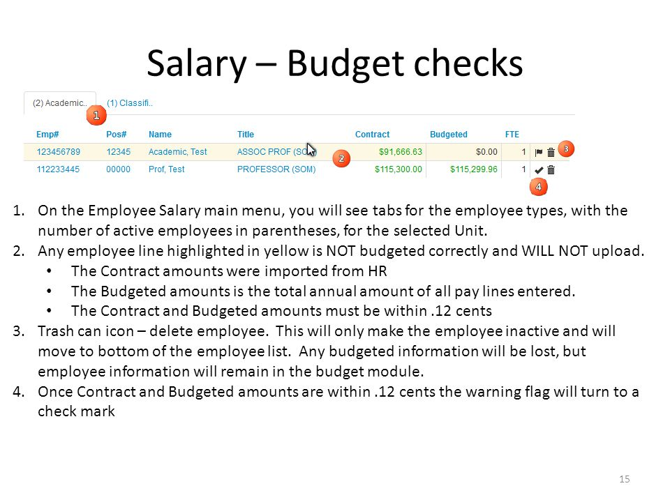 Salary – Budget checks 1.On the Employee Salary main menu, you will see tabs for the employee types, with the number of active employees in parentheses, for the selected Unit.