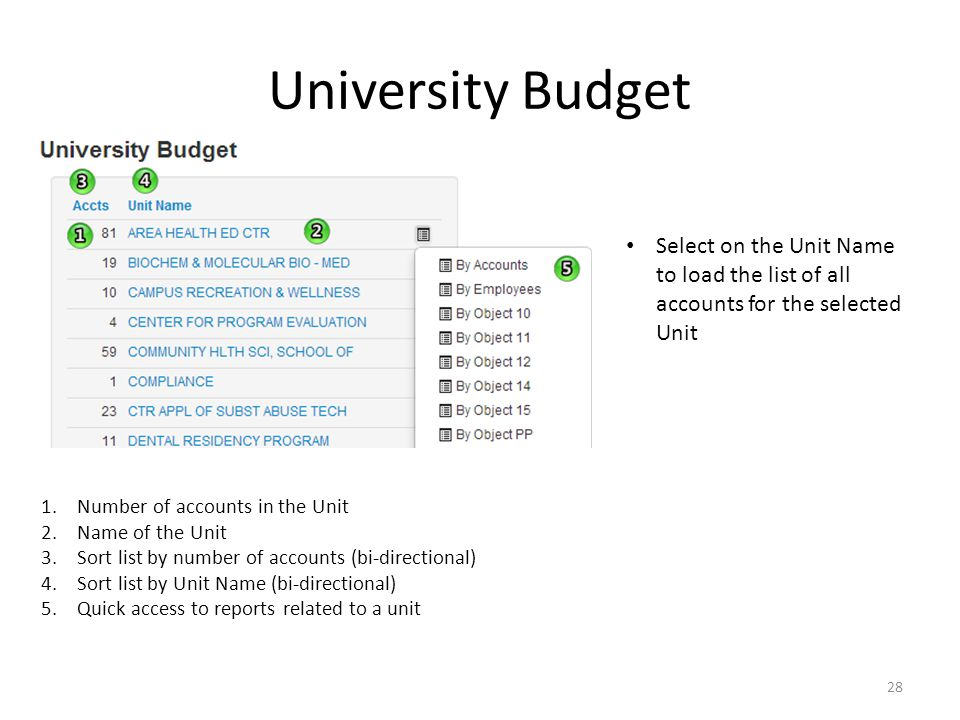 University Budget Select on the Unit Name to load the list of all accounts for the selected Unit 1.Number of accounts in the Unit 2.Name of the Unit 3.Sort list by number of accounts (bi-directional) 4.Sort list by Unit Name (bi-directional) 5.Quick access to reports related to a unit 28