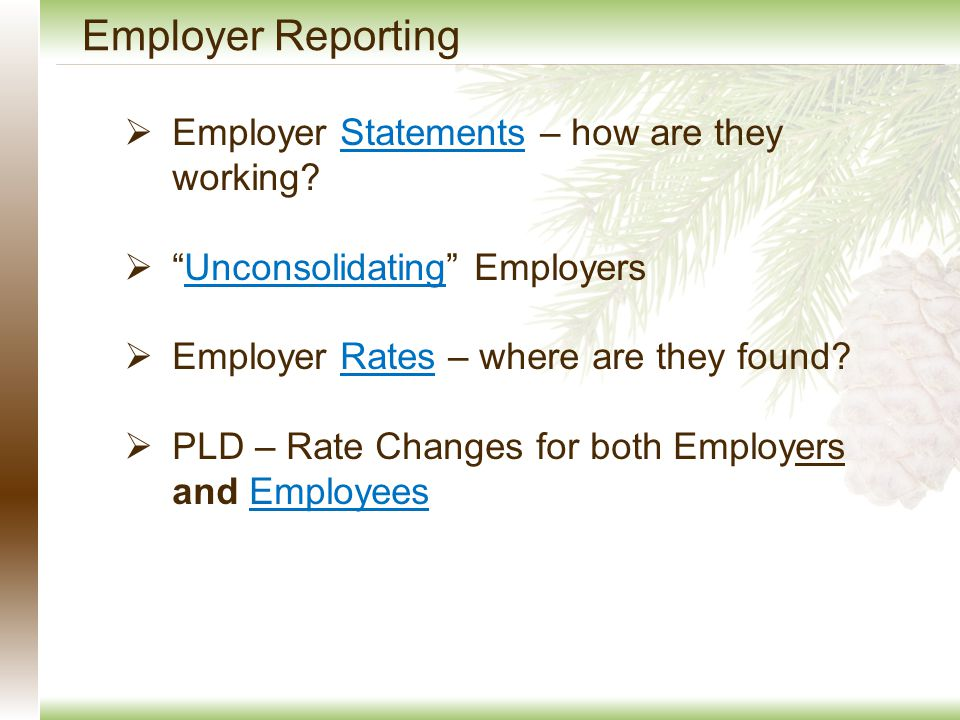 Employer Reporting  Employer Statements – how are they working Statements  Unconsolidating EmployersUnconsolidating  Employer Rates – where are they found Rates  PLD – Rate Changes for both Employers and EmployeesEmployees