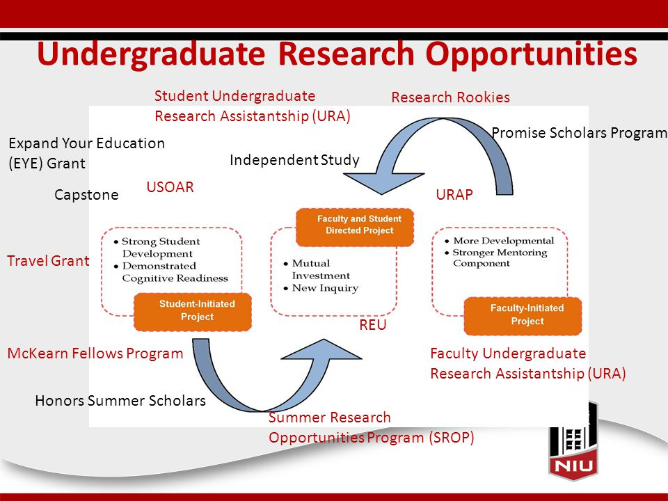 Undergraduate Research Opportunities Research Rookies USOAR Capstone Independent Study Student Undergraduate Research Assistantship (URA) Faculty Undergraduate Research Assistantship (URA) URAP Summer Research Opportunities Program (SROP) REU Promise Scholars Program McKearn Fellows Program Honors Summer Scholars Expand Your Education (EYE) Grant Travel Grant