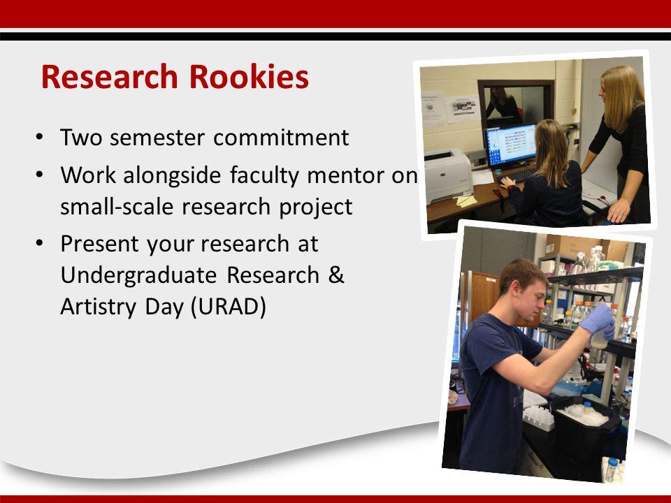 Research Rookies Two semester commitment Work alongside faculty mentor on small-scale research project Present your research at Undergraduate Research & Artistry Day (URAD)