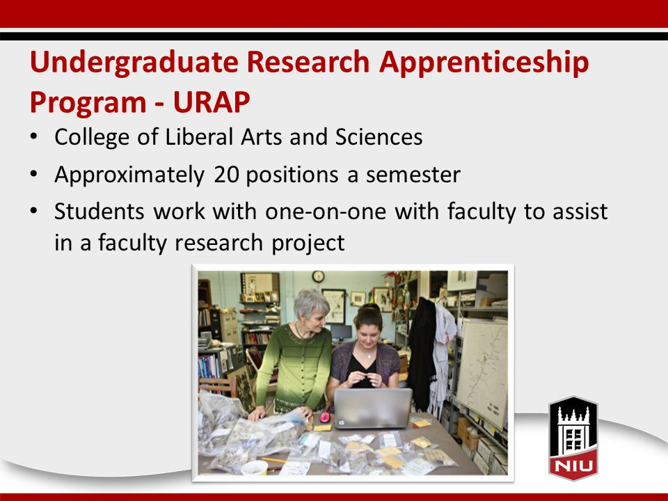 Undergraduate Research Apprenticeship Program - URAP College of Liberal Arts and Sciences Approximately 20 positions a semester Students work with one-on-one with faculty to assist in a faculty research project