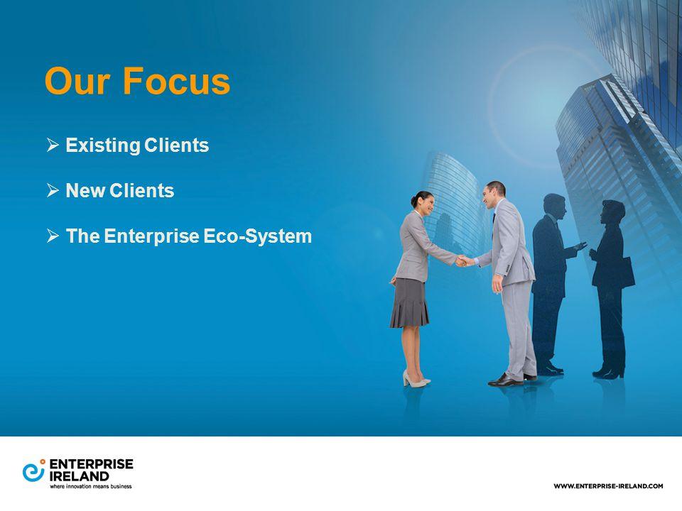 Our Focus  Existing Clients  New Clients  The Enterprise Eco-System