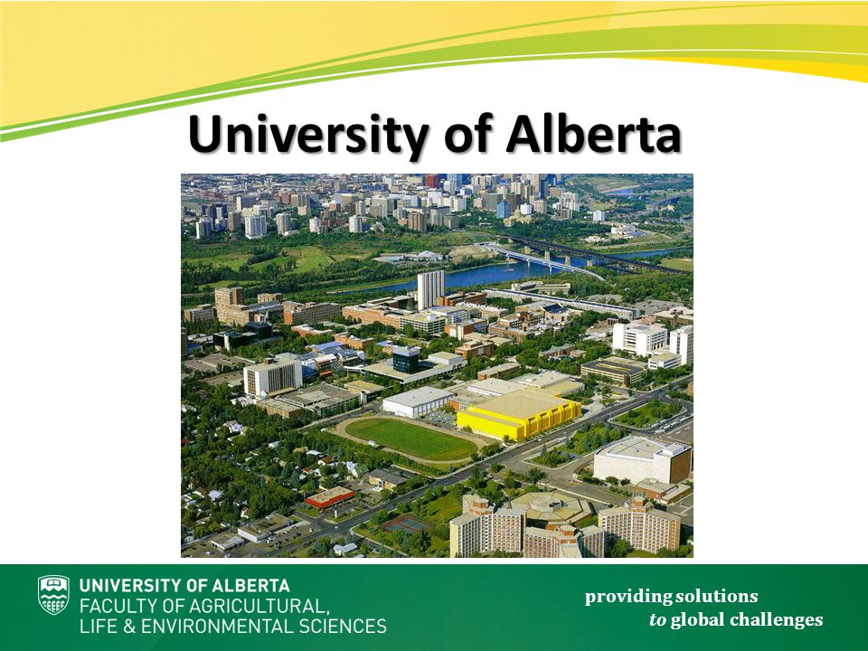 providing solutions to global challenges University of Alberta