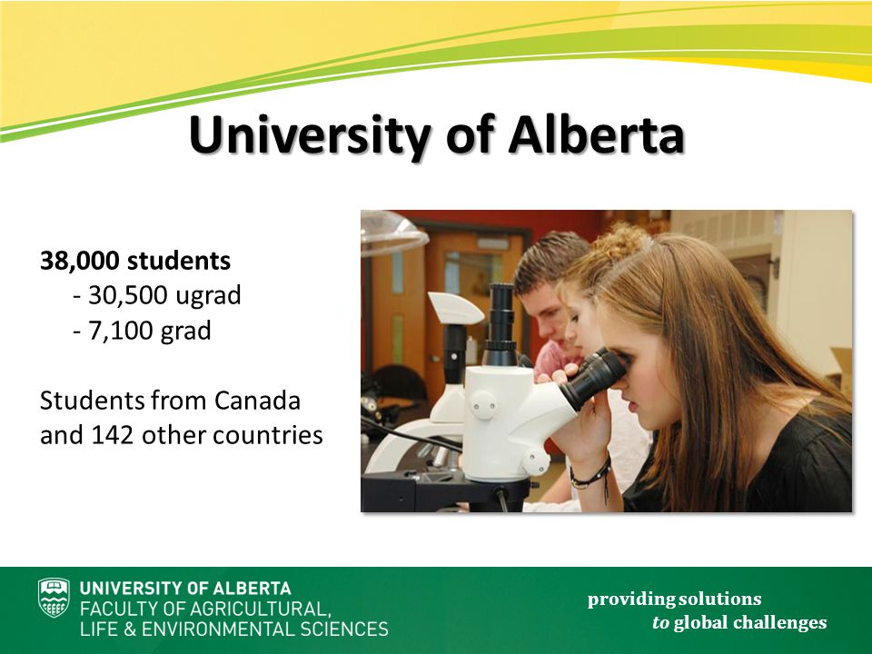 providing solutions to global challenges 38,000 students - 30,500 ugrad - 7,100 grad Students from Canada and 142 other countries University of Alberta