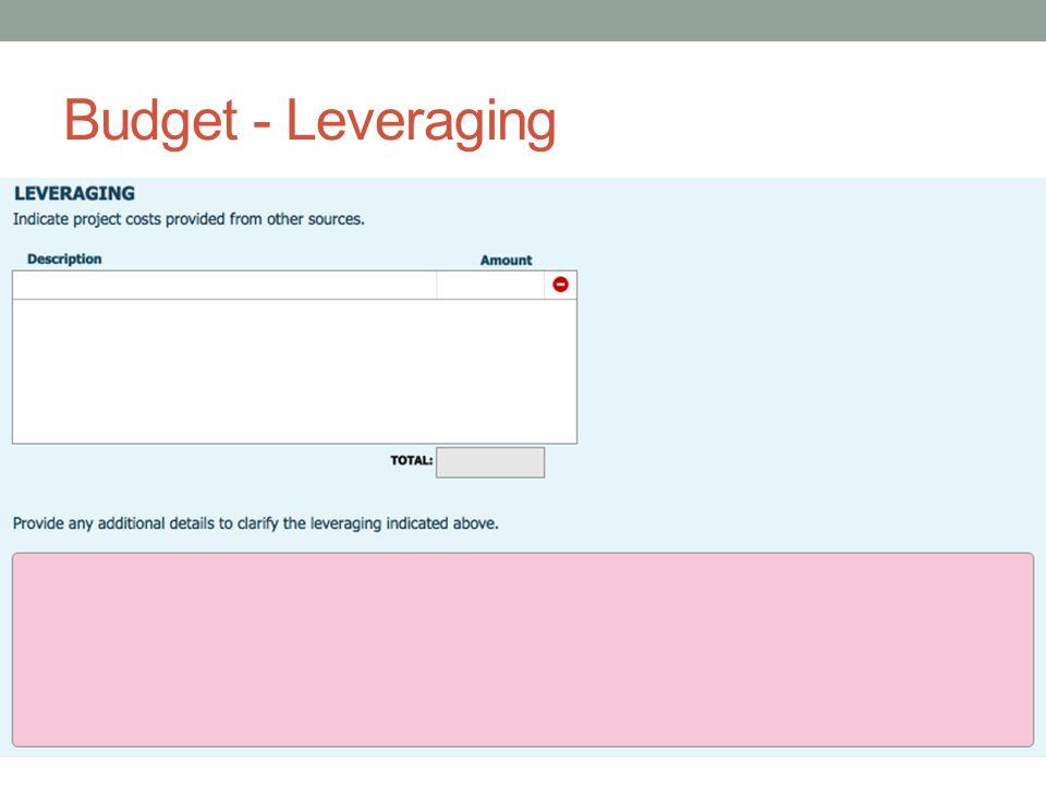 Budget - Leveraging