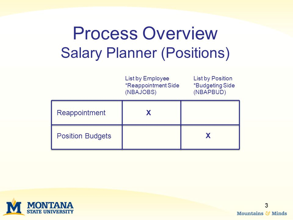 Process Overview Salary Planner (Positions) List by Employee *Reappointment Side (NBAJOBS) List by Position *Budgeting Side (NBAPBUD) ReappointmentX X 3 Position Budgets