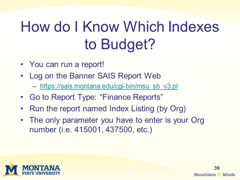 How do I Know Which Indexes to Budget? You can run a report! Log on the Banner SAIS Report Web –https://sais.montana.edu/cgi-bin/msu_sb_v3.plhttps://s