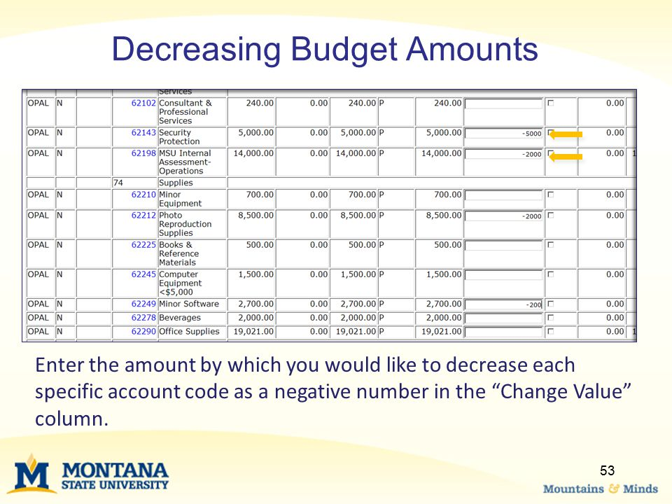 """Decreasing Budget Amounts Enter the amount by which you would like to decrease each specific account code as a negative number in the """"Change Value"""" c"""