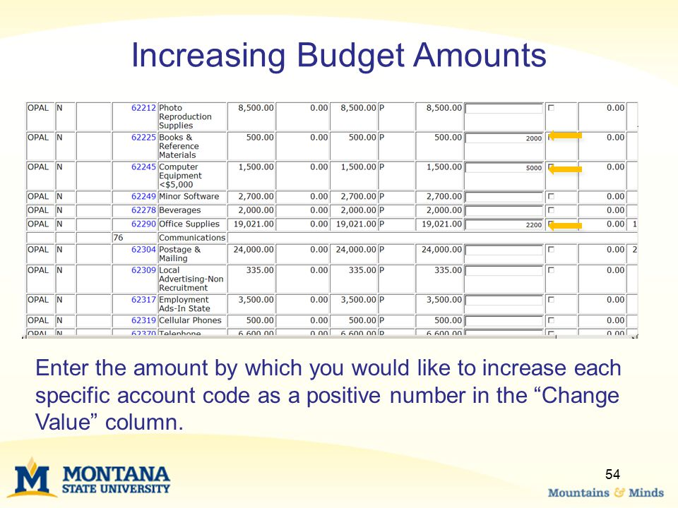 Increasing Budget Amounts Enter the amount by which you would like to increase each specific account code as a positive number in the Change Value column.