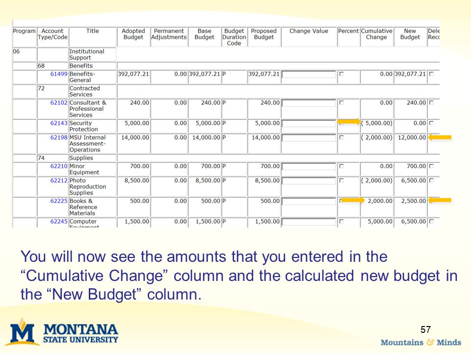 """You will now see the amounts that you entered in the """"Cumulative Change"""" column and the calculated new budget in the """"New Budget"""" column. 57"""