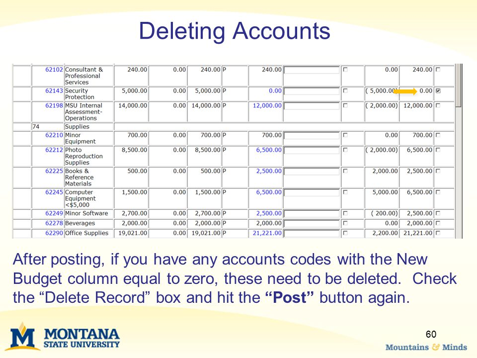 Deleting Accounts After posting, if you have any accounts codes with the New Budget column equal to zero, these need to be deleted.