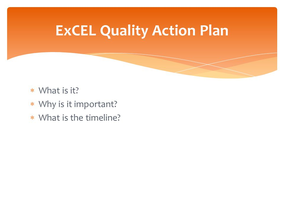  What is it?  Why is it important?  What is the timeline? ExCEL Quality Action Plan