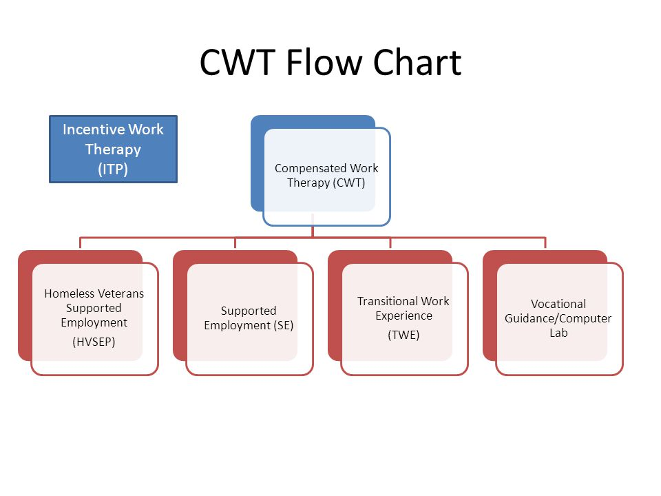 CWT Flow Chart Compensated Work Therapy (CWT) Homeless Veterans Supported Employment (HVSEP) Supported Employment (SE) Transitional Work Experience (TWE) Vocational Guidance/Computer Lab Incentive Work Therapy (ITP)